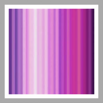 Pink and Purple Designers Choice Arrangement