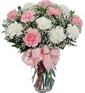 Pink and White Carnations Arrangements