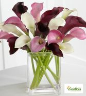 Pink and White Center Piece Calla Lilies