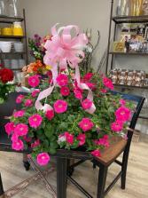 Pink Beauty Petunia Hanging Basket
