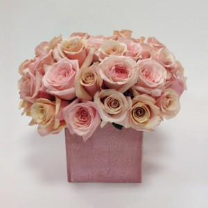 Pink Beauty Roses