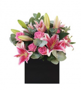 Pink Blooms All Occasion