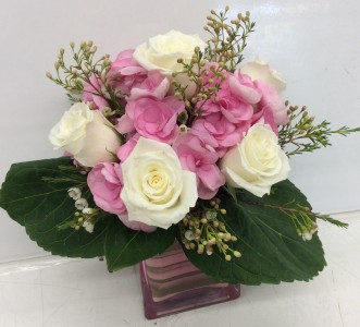 Pink Bubblegum Hydrangea Cube