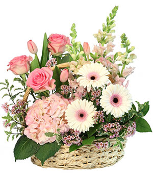 Pink Bundles of Joy Basket Arrangement in Barre, VT | Forget Me Not Flowers and Gifts LLC
