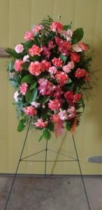 Pink Carnation Spray