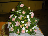 Pink Carnations Designers Choice