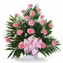 Pink carnations planter Fresh pink carnations in elegant planter
