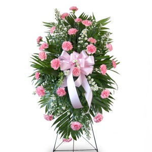 Pink Carnations Spray Beautiful pink carnations  standing spray