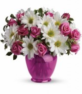 Pink Daisy Delight HEV071A