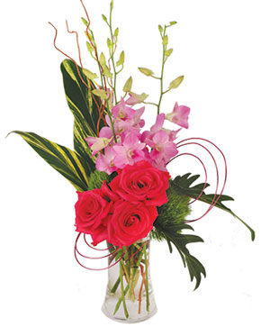 Pink Dendrobium Dream Floral Design in Kannapolis, NC | MIDWAY FLORIST OF KANNAPOLIS