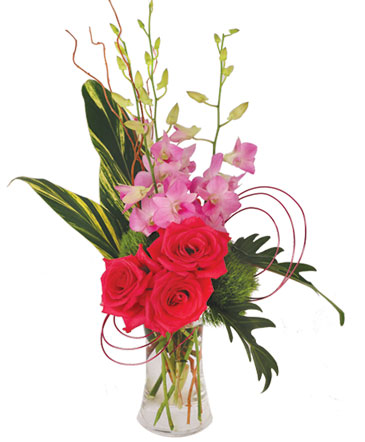 Pink Dendrobium Dream Floral Design
