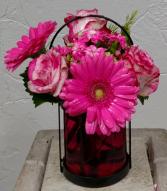 Pink Exuberance