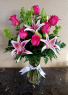 Mom's Purely Stargazers GREAT PRICE! Exclusively at Mom & Pops