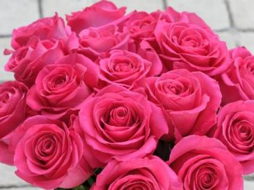 Pink Floyd  Roses