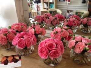Pink Garden roses  Please Call for pricing  in Oakville, ON | ANN'S FLOWER BOUTIQUE-Wedding & Event Florist