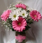 PINK GERBERAS AND WHITE DAISIES WITH BABY'S BREATH AND RIBBON DETAIL AROUND VASE!