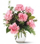 PINK NOTIONS VASE 12 CARNATIONS