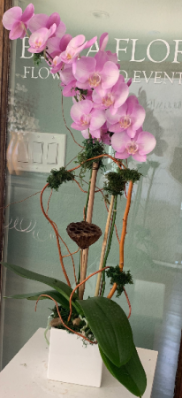 PINK ORCHID ELEGANT MIXTURE OF FLOWERS