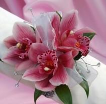 Pink Paradise Corsage