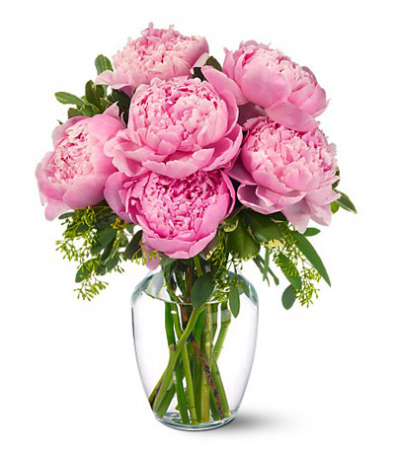 Pink Peonie Perfection