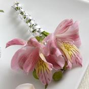 Pink Peruvian Lily Boutonniere Boutonniere