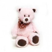 Pink Plush Teddy Bear New Baby