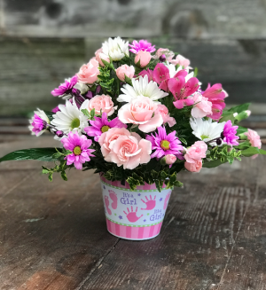 Pink Posies Baby Girl in Lawrenceburg, IN | MCCABE'S GREENHOUSE-FLORAL