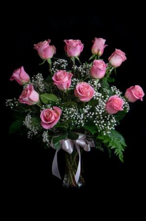 Pink Rose A Dozen