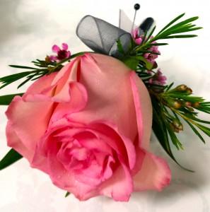 pink rose boutonniere boutonniere - Garden Rose Boutonniere