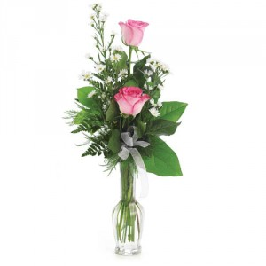 Pink Rose Budvase  Double Rose Vase