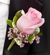 Pink rose butneer