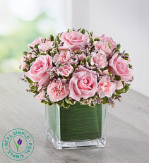 Pink Rose Fancy™ by Real Simple®