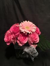 Pink rose glow