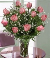 Pink Rose Splendor Dozen Roses Arranged in New Port Richey, Florida | FLOWERS TODAY FLORIST