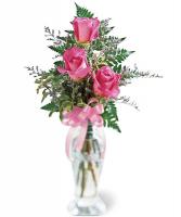 Pink Rose Trio