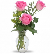 PINK ROSE TRIO DELIVERY