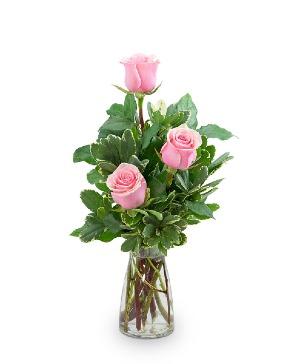 Pink Roses (3) Flower Arrangement in Nevada, IA | Flower Bed