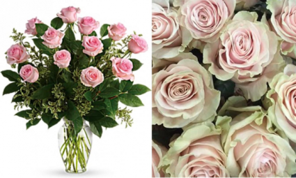 Pink Roses, Arranged Arrangement