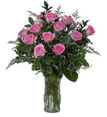 Pink Roses One Dozen Pink Roses