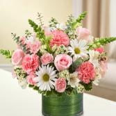 Pink Sherbet Cylinder Vase