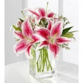 Pink Stargazer Lily Bouquet  Floral Arrangement