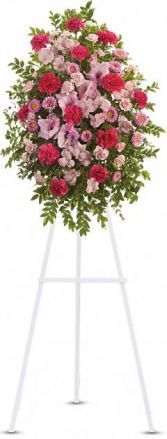 Pink Tribute Spray Flowers Funeral