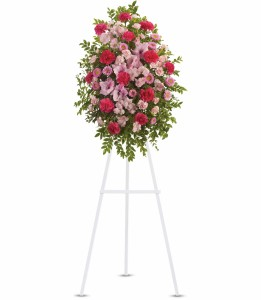 Pink Tribute Spray H2492A