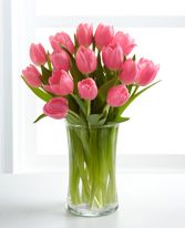Tulip Vase SPECIAL All Clolors