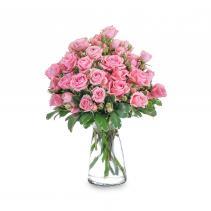 Pink Twinkle Arrangement
