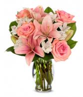 Pinkalicious  Valentine's