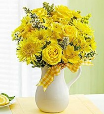 Pitcher of Sunshine Vibrant Yellow Blooms Bring Smiles!