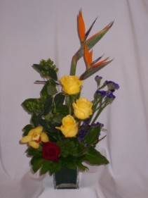 PIVOTAL BOUNDARY- Florists Prince George BC Florists in Prince George BC: AMAPOLA BLOSSOMS