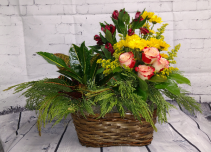Plant and Floral Basket Arrangement