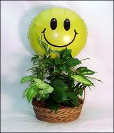 Plant Basket w/Smiley Face Mylar $55.95, $65.95, $75.95